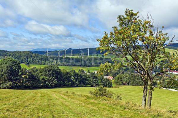 Montanhas paisagem floresta natureza azul Foto stock © blasbike