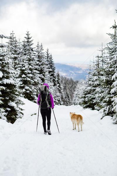 Lány hátizsákos turista trekking tél erdő kutya Stock fotó © blasbike