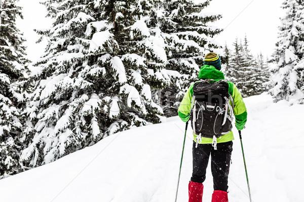 Zimą wycieczka biały lesie człowiek turystyka Zdjęcia stock © blasbike