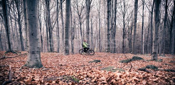 Mountain biker on cycle trail in woods Stock photo © blasbike