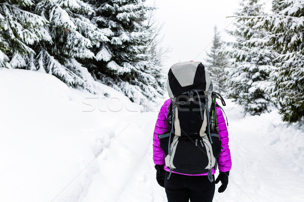Woman hiking in winter woods with backpack Stock photo © blasbike