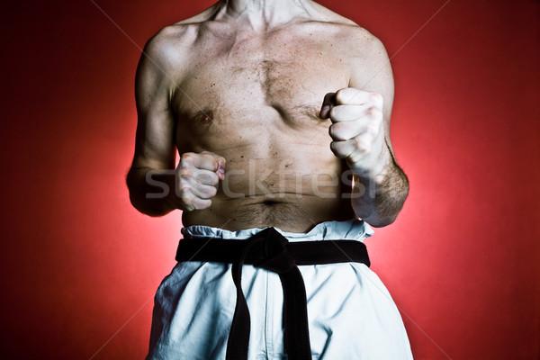 Karate eğitim spor uygunluk spor salonu genç Stok fotoğraf © blasbike