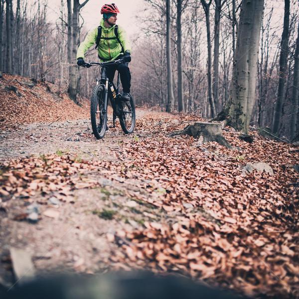 Dağ bisiklete binme iz orman orman Stok fotoğraf © blasbike