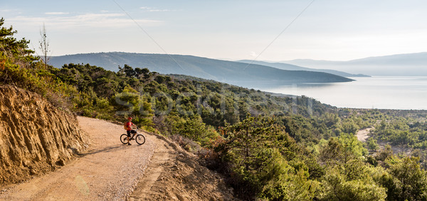 Mountain biker riding on bike in summer sunset woods Stock photo © blasbike