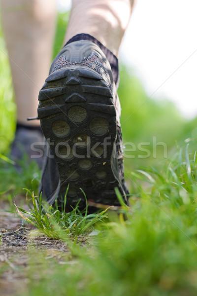 Stock fotó: Férfi · sétál · erdő · testmozgás · kint · zöld