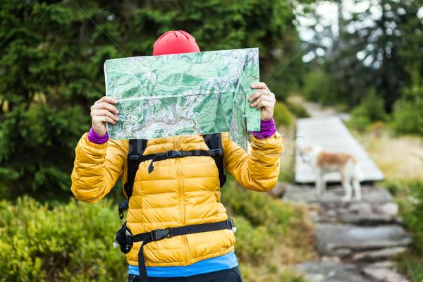 Foto stock: Mulher · caminhadas · leitura · mapa · floresta · andarilho