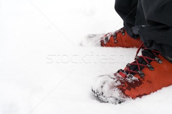 Stockfoto: Wandelen · schoenen · sneeuw · natuur · metaal · veld