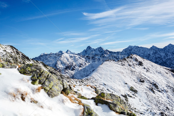 Сток-фото: гор · пейзаж · зима · горные · синий