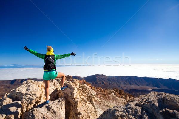 Vrouw klimmen succes berg top geslaagd Stockfoto © blasbike