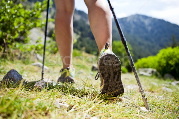 Nordic walking legs in mountains Stock photo © blasbike