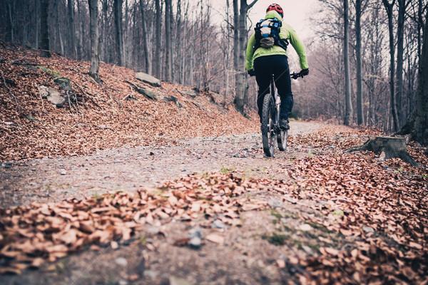 Górskich cyklu szlak lesie góry Zdjęcia stock © blasbike