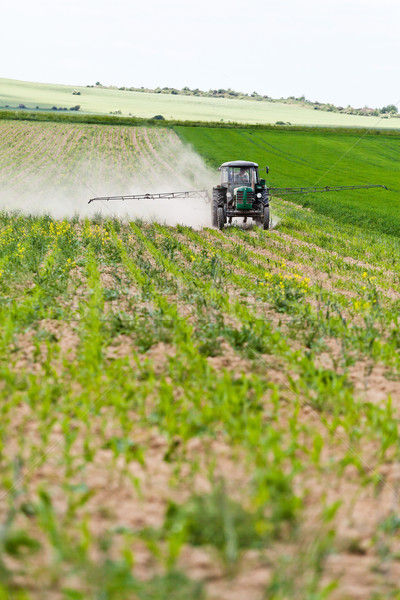 Tractor spraying, agriculture Stock photo © blasbike