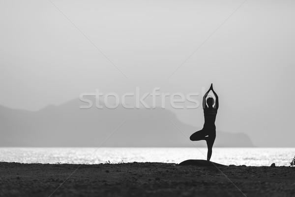 Woman meditating in yoga pose silhouette Stock photo © blasbike