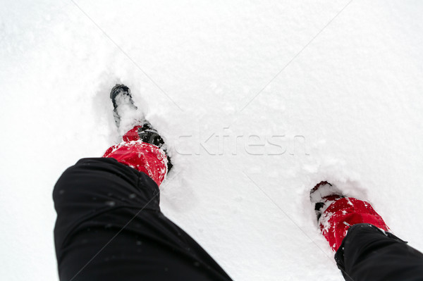 Snow shoes on a white snow during hiking in winter Stock photo © blasbike