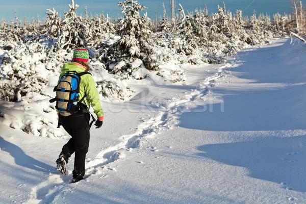Kirándulás tél hegyek nő hó nap Stock fotó © blasbike