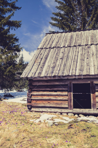 Vallée montagnes Pologne inspiré paysage belle Photo stock © blasbike