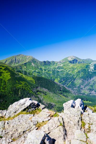 Montagna panorama view estate Foto d'archivio © blasbike