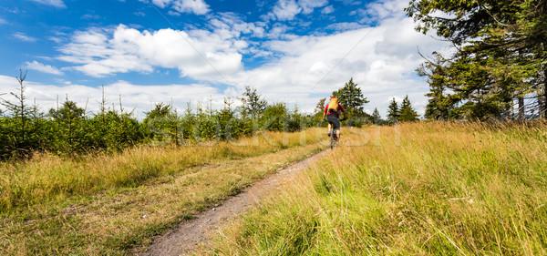 горные Велоспорт верховая езда гор лесу Сток-фото © blasbike