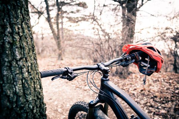 Mountain bike capacete outono mata bicicleta Foto stock © blasbike