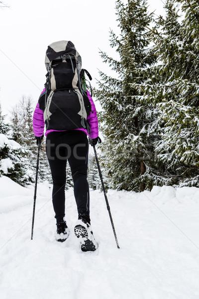 Donna zaino in spalla escursioni inverno foresta neve Foto d'archivio © blasbike