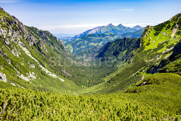 ösztönző hegyek tájkép kilátás napos idő nyár Stock fotó © blasbike