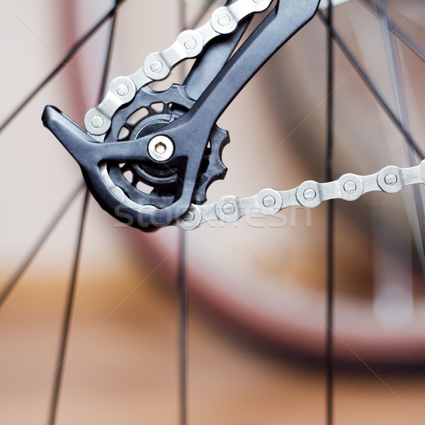Rear derailleur and chain of mountain bike Stock photo © blasbike