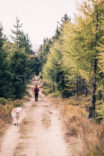 Feliz mujer senderismo caminando perro forestales Foto stock © blasbike