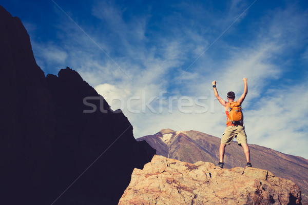 Man celebrating success in mountains, arms outstretched Stock photo © blasbike