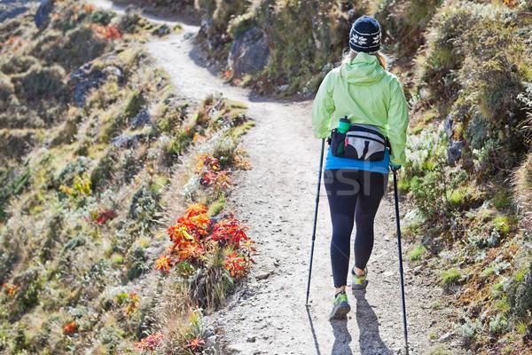 Woman nordic walking in mountains Stock photo © blasbike