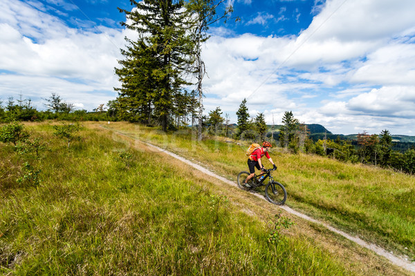 Mountain biking man riding in woods and mountains Stock photo © blasbike