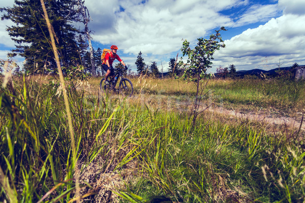 Mountain biker cycling riding in woods and mountains Stock photo © blasbike