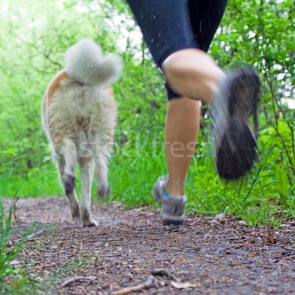 ストックフォト: 女性 · を実行して · 犬 · 森林 · 若い女性 · 夏