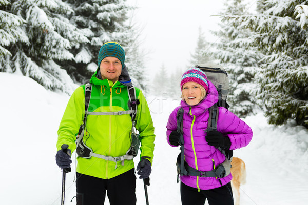 пару Туристов Поход зима лесу человека Сток-фото © blasbike
