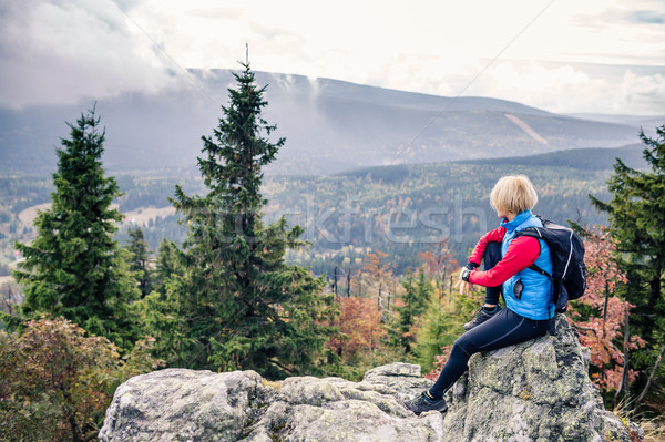 Stock fotó: Nő · kirándulás · ősz · hegyek · erdő · természetjáró