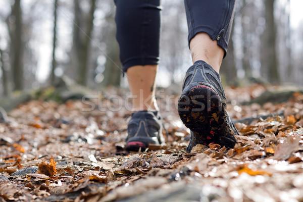 Mulher caminhada outono floresta caminhadas esportes Foto stock © blasbike