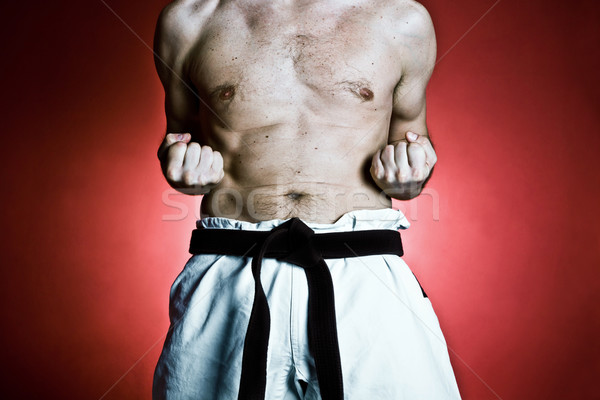 Karate training, sport and fitness at gym Stock photo © blasbike