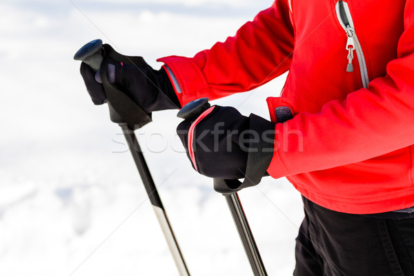 Vrouw lopen winter natuur Stockfoto © blasbike