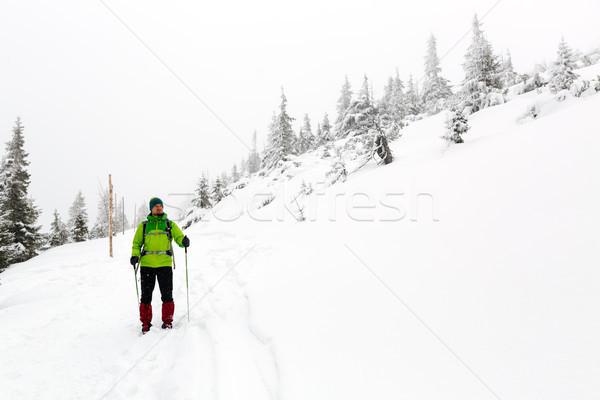 Stock fotó: Tél · természetjáró · fehér · erdő · trekking · kirándulás