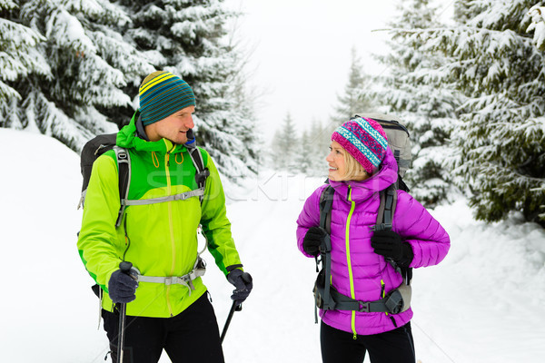 Couple hikers trekking on snow in winter woods Stock photo © blasbike