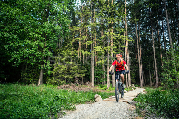 Stock photo: Mountain biker cycling riding in green forest