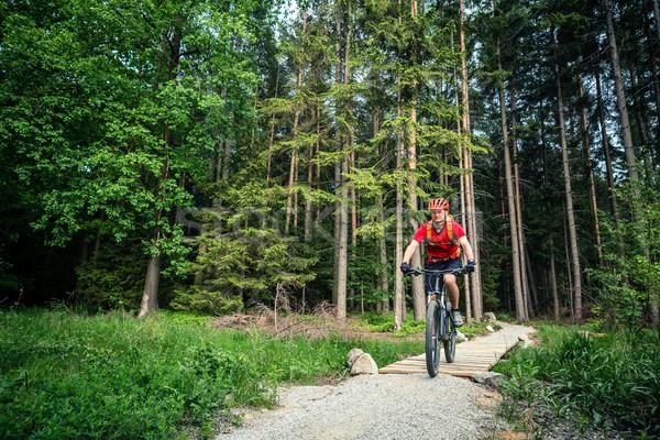 Górskich rowerowe jazda konna zielone lasu Zdjęcia stock © blasbike