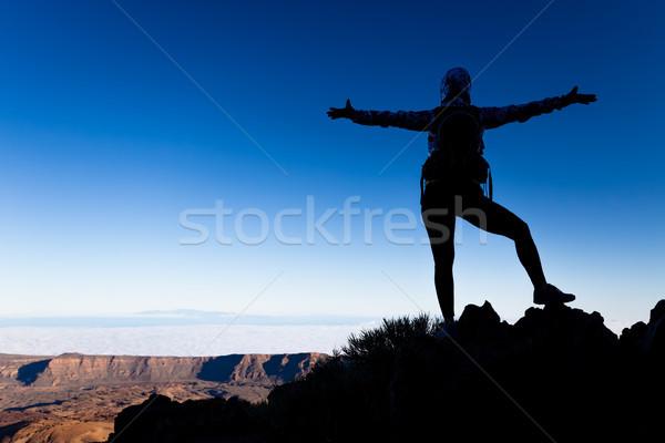 Foto d'archivio: Donna · successo · silhouette · montagna · top · di · successo