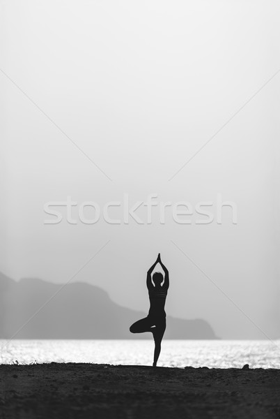 Stock photo: Woman meditating in yoga vrksasana pose silhouette