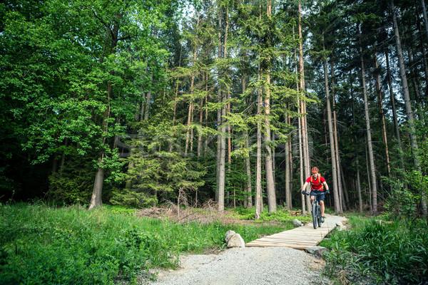 Montanha equitação ciclismo verão floresta Foto stock © blasbike