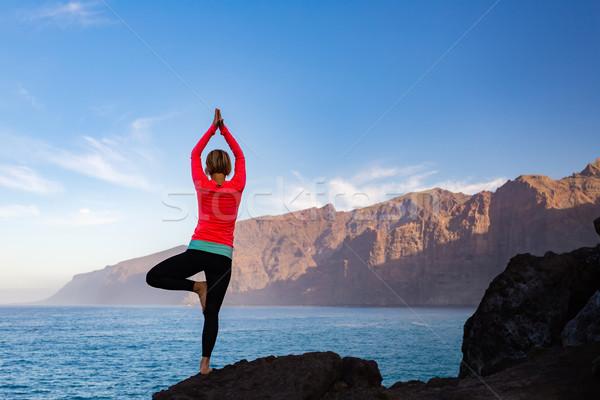 Stok fotoğraf: Kadın · meditasyon · yoga · ağaç · poz · siluet