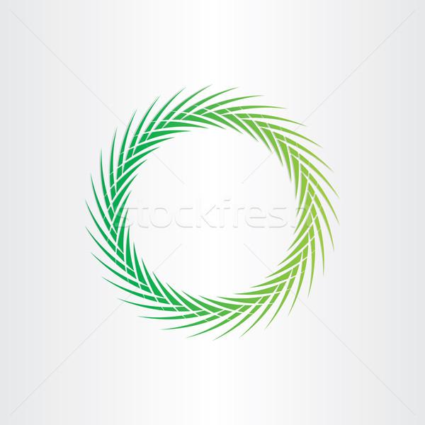 Zöld absztrakt vektor kör terv szín Stock fotó © blaskorizov