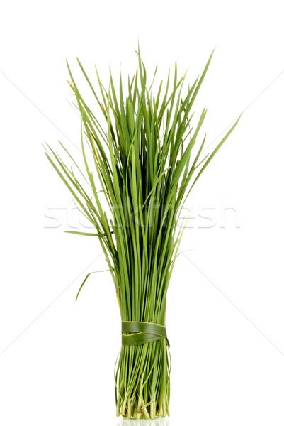 Çin sarımsak yalıtılmış beyaz arka plan Stok fotoğraf © blinztree
