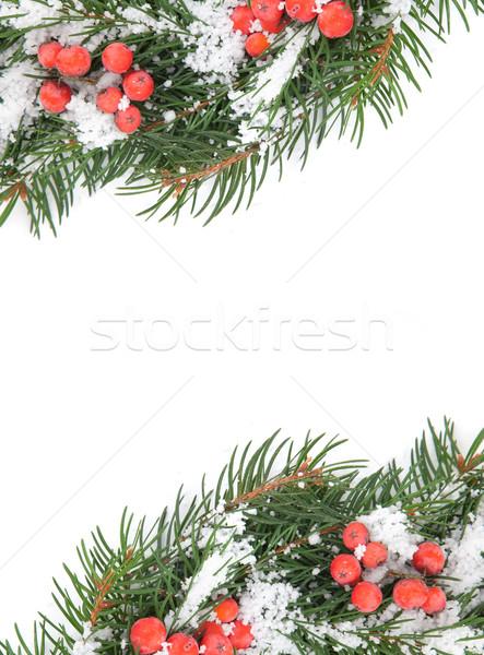 クリスマス フレームワーク 雪 ベリー 孤立した 白 ストックフォト © bloodua