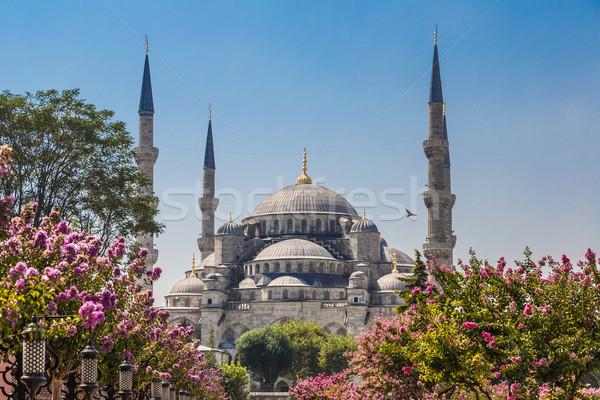 The Blue Mosque, (Sultanahmet Camii), Istanbul, Turkey Stock photo © bloodua