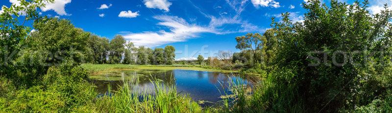 Panorama verão manhã lago verde árvores Foto stock © bloodua